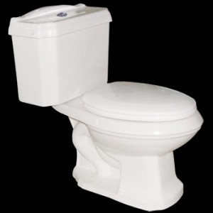 Ashley Dual Flush Elongated Toilet