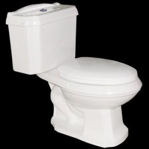 Ashley Dual Flush Elongated Toilet